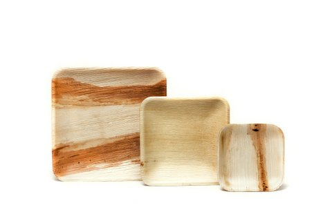square palm leaf plates  sc 1 st  Eco-Gecko & Palm leaf plates | Wooden plates | Disposable plates