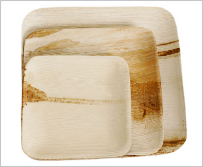 Square (Flat) Palm Leaf Plates : palm leaf plates disposable - pezcame.com